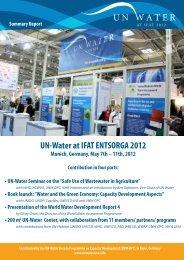 Summary Report - UN-Water