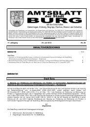 AMTSBLATT 28-2013- doc - Stadt Burg