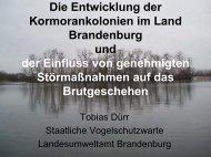 Klick - Landesfischereiverband Brandenburg - Berlin