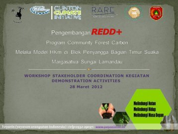 Community Forest Carbon Program in Lamandau River