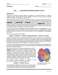 lab enzyme catalysis - Explore Biology