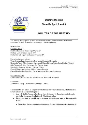 Stratinc Meeting Tenerife April 7 and 8 MINUTES OF THE ... - Urenio