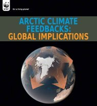 Arctic Climate Feedbacks: Global Implications - WWF Blogs