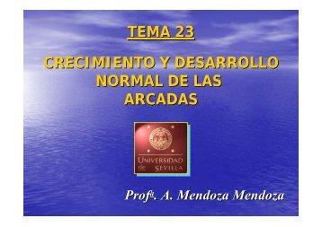 Tema 23 Crecimientoy desarrollo normal de las arcadas