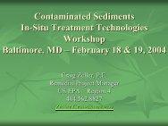 Contaminated Sediments In-Situ Treatment Technologies Workshop ...