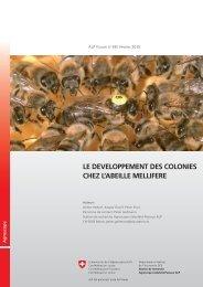 Le développement des colonies chez l'abeille mellifère - Apiservices