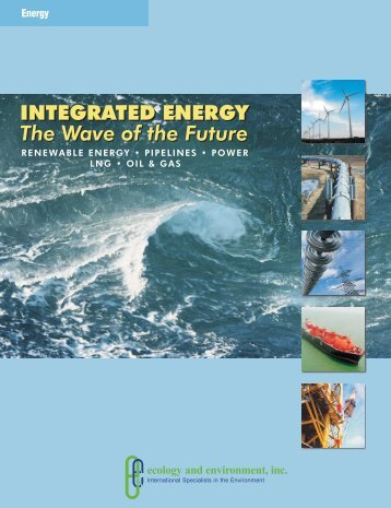 Integrated Energy - Ecology & Environment