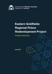 Project Summary - Department of Treasury