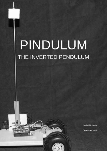THE INVERTED PENDULUM
