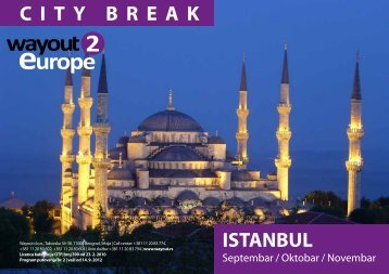 ISTANBUL CITY BREAK - Wayout