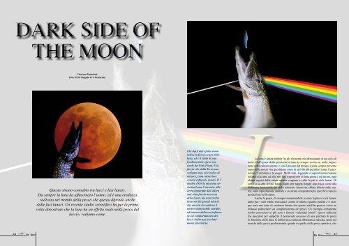 Questo strano connubio tra lucci e fasi lunari. Da sempre la luna ha ...