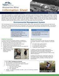 Environmental Management System FINAL Nov 2010 - Yukon Zinc ...