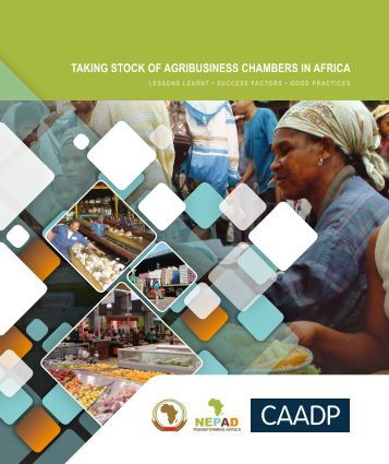 NEPAD-CAADP-Agribusiness-Chambers-in-Africa-Study-FINAL