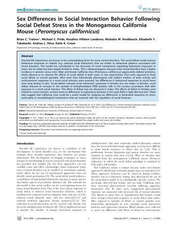 Mouse (Peromyscus californicus) - Peromyscus Genetic Stock Center