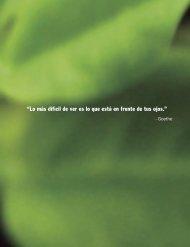 Libro sobre Moringa - Trees for Life