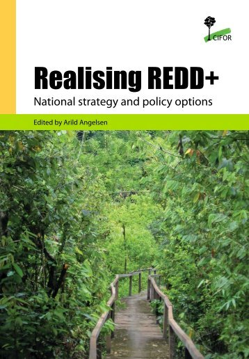 Realising REDD+: national strategy and policy options - Center for ...