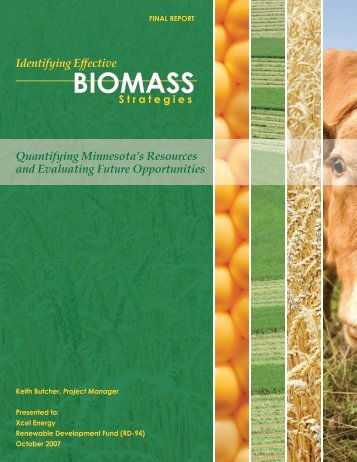 Biomass Feasibility Project Final Report - Xcel Energy