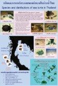เต่าทะเล - Page 2