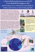 เต่าทะเล - Page 4