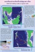 เต่าทะเล - Page 5