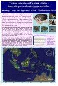 เต่าทะเล - Page 6