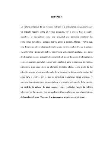 03 REC 97 RESUMEN.pdf - Repositorio UTN