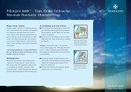 Pilkington Activ™ – Tipps für den Verbraucher. Maximale Durchsicht ...