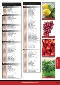 Fruit & Veg - Turner Price - Page 4