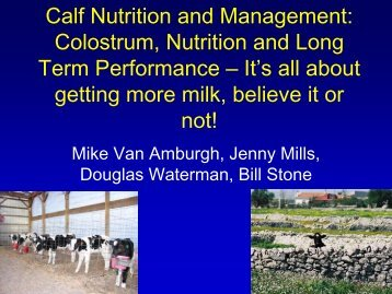 Calf Nutrition and Management: Colostrum, Nutrition and Long Term ...