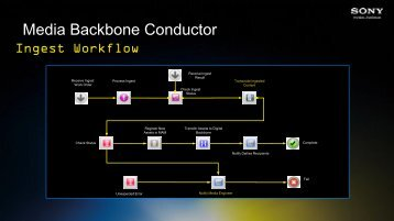 Media Backbone Conductor - SET