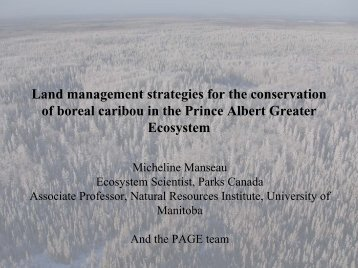 Land management strategies for the conservation of boreal caribou ...