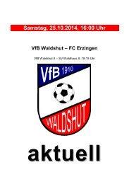stadionzeitung-141025-erzingen-fc