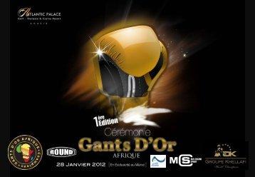 28 Janvier 2012 - Fédération Française de Boxe