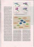 Mostra/Apri - Sapienza - Page 4