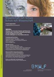Wespe - Sparkling Science