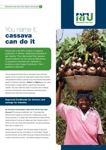 You name it, cassava can do it - Research Into Use