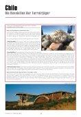 Grèce Chili - Cave SA - Seite 7