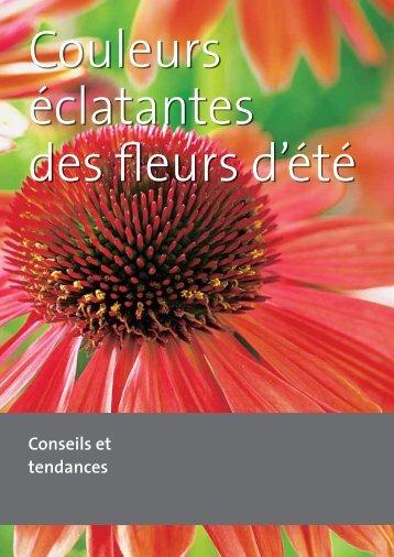PDF – Couleurs éclatantes des fleurs d'été - grneprofis-beb.ch