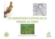 réunion nématodes 120213 - Chambre d'agriculture