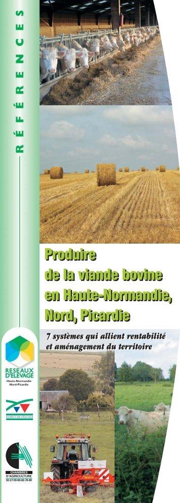 Produire de la viande bovine - Chambre d'agriculture