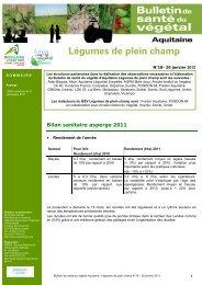 BSV-18-Legumes-de-plein-champ-20-01 - Chambre Régionale d ...