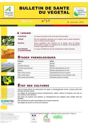 Etat g n ral de la vigne chambre d 39 agriculture des - Chambre d agriculture de la gironde ...