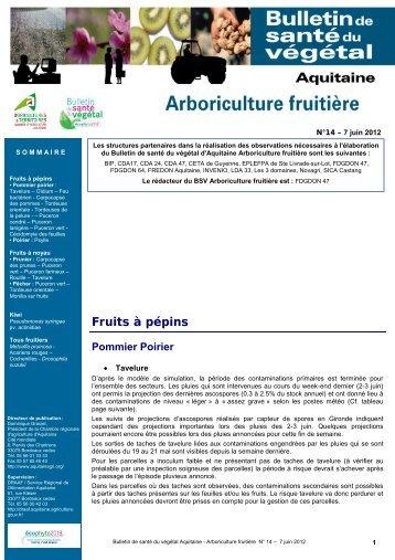 Abeilles chambre r gionale d 39 agriculture aquitaine for Chambre d agriculture aquitaine