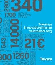 Tekesin ja innovaatiotoiminnan vaikutukset 2013 (pdf)