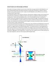 Come funziona un microscopio confocale - Amedeolucente.it