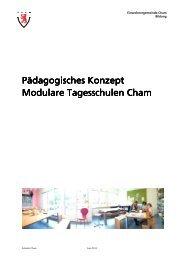 Pädagogisches Konzept_Juli 2013 - Schulen Cham