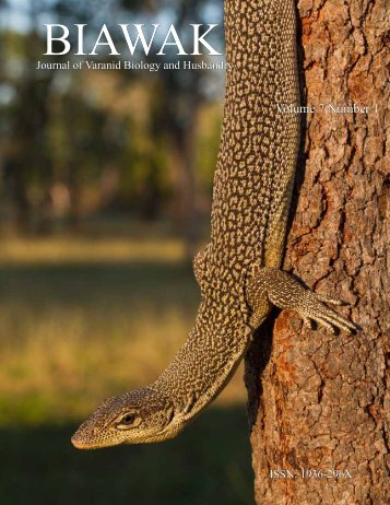 Nocturnal Activity of Varanus salvator on Tinjil Island, Indonesia ...