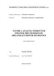 Návrh a analýza webových stránek pro neziskovou organizaci ...