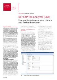 Der CAPITAL-Analyzer (CAA) - BearingPoint ToolBox
