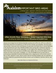 Rowe as an Important Bird Area… - National Audubon Society